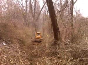 Preparation for prescribed burning, Schiff Nature Preserve, 3/01/2009